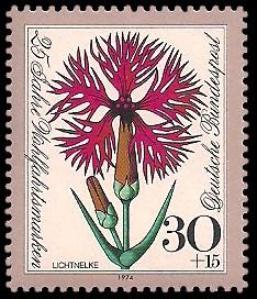 30 + 15 Pf Briefmarke: 25 Jahre Wohlfahrtsmarken