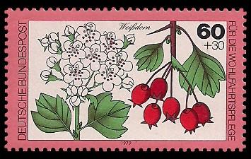 60 + 30 Pf Briefmarke: Für die Wohlfahrtspflege 1979