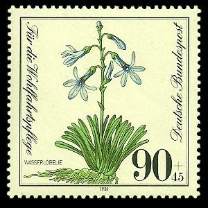 90 + 45 Pf Briefmarke: Für die Wohlfahrtspflege 1981, gefährdete Feuchtpflanzen
