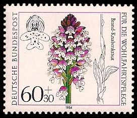 60 + 30 Pf Briefmarke: Für die Wohlfahrtspflege 1984, Orchideen
