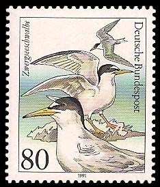 80 Pf Briefmarke: Wasser- /Seevögel