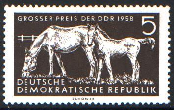 5 Pf Briefmarke: Pferdesport, Großer Preis der DDR 1958