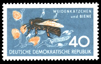40 Pf Briefmarke: Naturschutz, Weidenkätzchen und Biene