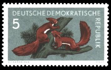 5 Pf Briefmarke: Waldtiere, Eichhörnchen