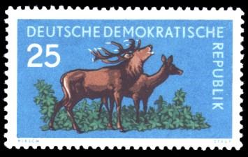 25 Pf Briefmarke: Waldtiere, Rotwild