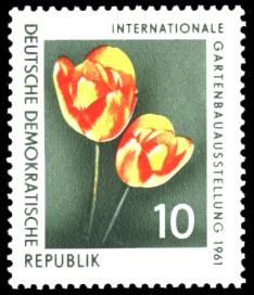 10 Pf Briefmarke: Internationale Gartenbauausstellung 1961, Tulpe