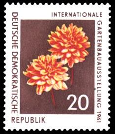 20 Pf Briefmarke: Internationale Gartenbauausstellung 1961, Dahlie