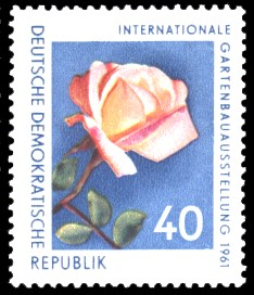 40 Pf Briefmarke: Internationale Gartenbauausstellung 1961, Rose