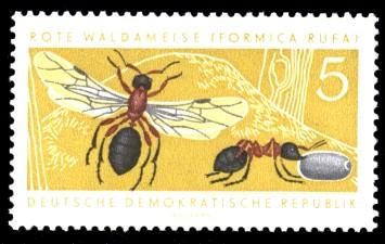 5 Pf Briefmarke: Nützliche geschützte Tiere, Rote Waldameise