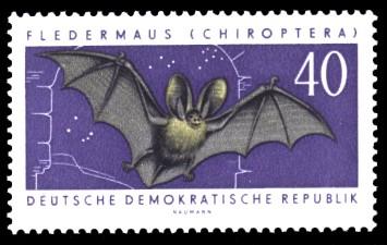 40 Pf Briefmarke: Nützliche geschützte Tiere, Fledermaus