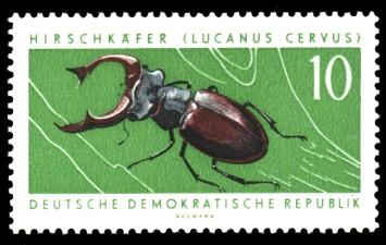 10 Pf Briefmarke: Geschützte Tiere, Hirschkäfer