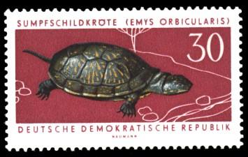 30 Pf Briefmarke: Geschützte Tiere, Sumpfschildkröte