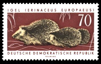 70 Pf Briefmarke: Geschützte Tiere, Igel