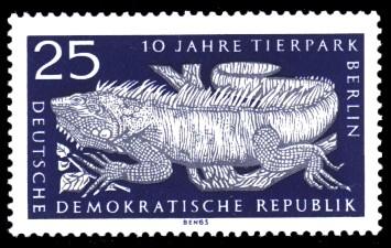 25 Pf Briefmarke: 10 Jahre Tierpark Berlin, Leguan