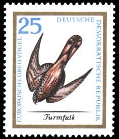 25 Pf Briefmarke: Europäische Greifvögel, Turmfalk