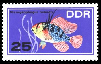25 Pf Briefmarke: Zierfische, Microgeophagus ramirezi