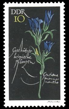 10 Pf Briefmarke: Geschützte heimische Pflanzen, Lungenenzian