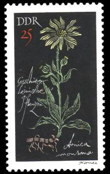 25 Pf Briefmarke: Geschützte heimische Pflanzen, Bergarnika