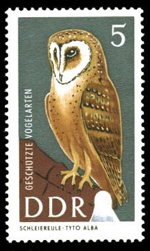 5 Pf Briefmarke: Geschützte Vogelarten, Schleiereule
