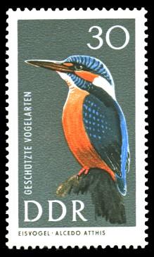 30 Pf Briefmarke: Geschützte Vogelarten, Eisvogel