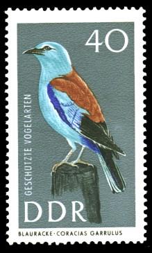 40 Pf Briefmarke: Geschützte Vogelarten, Blauracke