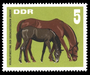 5 Pf Briefmarke: Vollblutmeeting der sozialistischen Länder