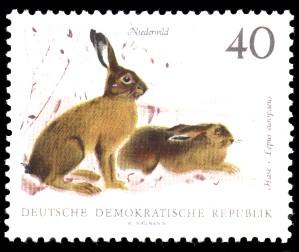 40 Pf Briefmarke: Niederwild, Hase