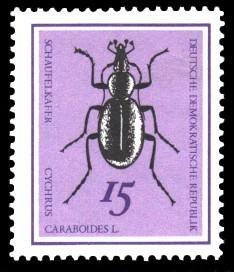 15 Pf Briefmarke: Nützliche Käfer, Schaufelkäfer