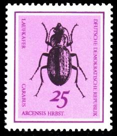 25 Pf Briefmarke: Nützliche Käfer, Laufkäfer