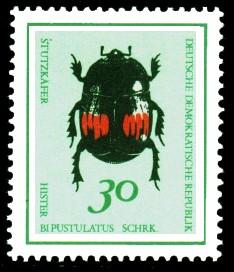 30 Pf Briefmarke: Nützliche Käfer, Stutzkäfer