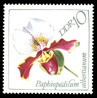 10 Pf Briefmarke: Orchideen