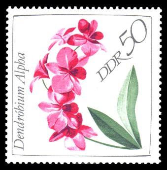 50 Pf Briefmarke: Orchideen