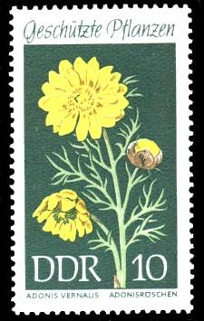 10 Pf Briefmarke: Geschützte Pflanzen, Adonisröschen