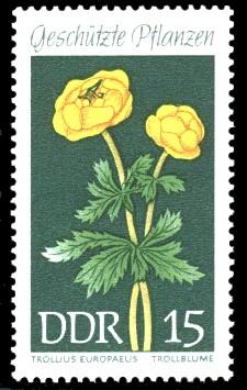 15 Pf Briefmarke: Geschützte Pflanzen, Trollblume