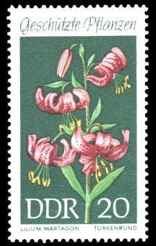 20 Pf Briefmarke: Geschützte Pflanzen, Türkenbund
