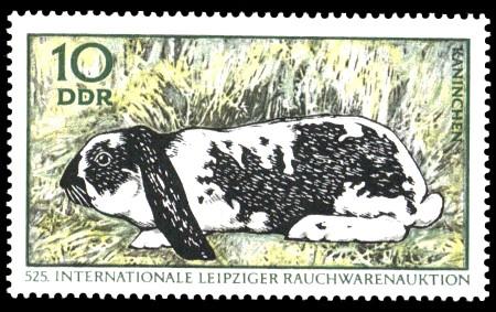 10 Pf Briefmarke: Internationale Rauchwarenauktion, Kaninchen