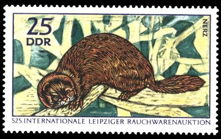 25 Pf Briefmarke: Internationale Rauchwarenauktion, Nerz