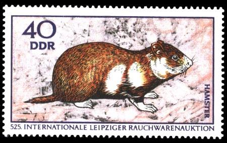 40 Pf Briefmarke: Internationale Rauchwarenauktion, Hamster