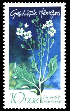 10 Pf Briefmarke: Geschützte Pflanzen, Seekohl