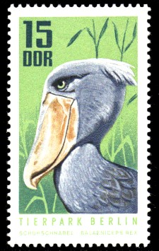 15 Pf Briefmarke: Tierpark Berlin, Schuhschnabel