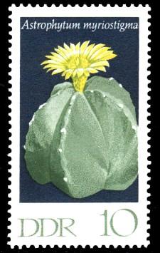 10 Pf Briefmarke: Kakteen, Bischofsmütze