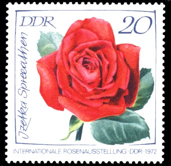 20 Pf Briefmarke: Internationale Rosenausstellung, Izetka Spreeathen