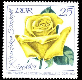 25 Pf Briefmarke: Internationale Rosenausstellung, Izetka Köpenicker Sommer
