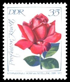 35 Pf Briefmarke: Internationale Rosenausstellung, Professor Knöll