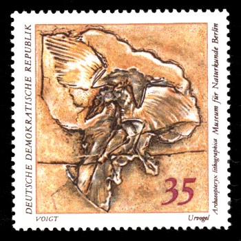 35 Pf Briefmarke: Paläontologische Sammlungen aus dem Museum für Naturkunde in Berlin