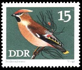 15 Pf Briefmarke: Naturschutz, Singvögel, Seidenschwanz