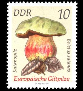 10 Pf Briefmarke: Europäische Giftpilze, Satanspilz