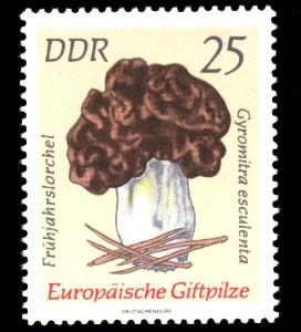 25 Pf Briefmarke: Europäische Giftpilze, Frühjahrslorchel