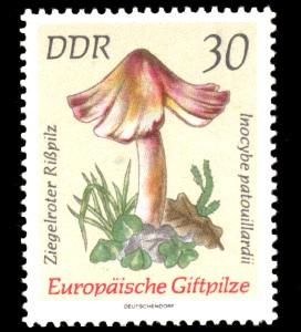 30 Pf Briefmarke: Europäische Giftpilze, Ziegelroter Rißpilz