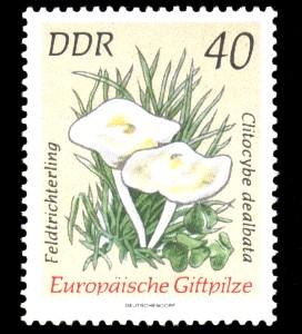 40 Pf Briefmarke: Europäische Giftpilze, Feldtrichterling